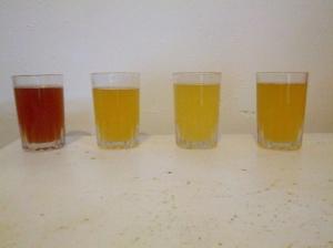 grain-experiment1